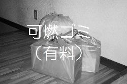 2015_7_31.JPG